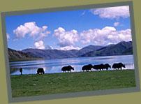Yamdrok Tsho Lake.